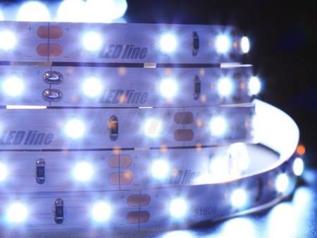 Taśma LED line 300 SMD 3528 biała zimna 10000-13000K 5 metrów