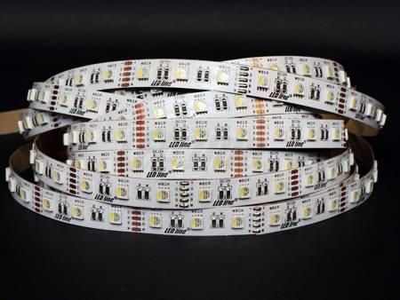 Taśma LED line 300 SMD 5060 RGBW 2600-2868K 5 metrów